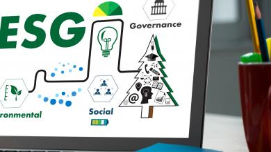 A importância de ESG para o pequeno empreendedor